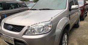 Cần bán xe Ford Escape năm sản xuất 2010 giá 395 triệu tại Tp.HCM