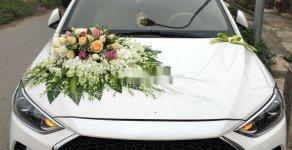 Cần bán lại xe Hyundai Elantra 1.6 MT đời 2018, màu trắng, nhập khẩu nguyên chiếc, giá chỉ 510 triệu giá 510 triệu tại Hà Nội