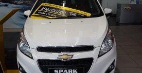 Cần bán lại xe Chevrolet Spark năm 2014, màu trắng chính chủ giá cạnh tranh giá 260 triệu tại Tp.HCM