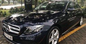 Bán xe Mercedes E class năm 2017 giá 1 tỷ 950 tr tại Tp.HCM
