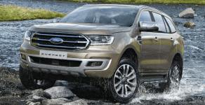 Bán Ford Everest Trend 2.0L đời 2019, màu vàng cát, xe nhập khẩu nguyên chiếc giá 1 tỷ 135 tr tại Tp.HCM
