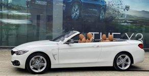 Cần bán BMW 4 Series năm sản xuất 2019, màu trắng, nhập khẩu nguyên chiếc giá 2 tỷ 600 tr tại Tp.HCM