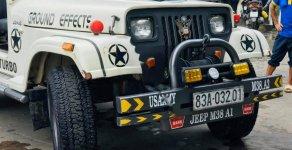 Cần bán gấp Jeep CJ 5 2.5 MT đời 1990, màu trắng, nhập khẩu nguyên chiếc giá 160 triệu tại Tp.HCM