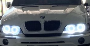 Cần bán xe BMW X5 đời 2003, màu trắng, xe nhập giá 398 triệu tại Gia Lai