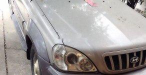 Cần bán xe Hyundai Terracan năm 2004, màu bạc, nhập khẩu nguyên chiếc giá cạnh tranh giá 96 triệu tại Hà Nội