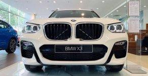 BMW Phú Nhuận - Cần bán xe BMW X3 2.0 Turbo đời 2019, màu trắng, xe nhập giá 2 tỷ 859 tr tại Tp.HCM