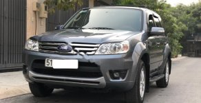 Cần bán Ford Escape XLT AT đời 2010, màu xám, giá rất tốt giá 395 triệu tại Tp.HCM