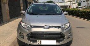 Cần bán xe Ford EcoSport năm sản xuất 2017, màu bạc xe gia đình giá 485 triệu tại Tp.HCM
