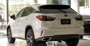 Bán xe Lexus NX 300 2019, màu trắng, nhập khẩu chính chủ giá 3 tỷ 250 tr tại Tp.HCM