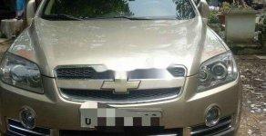 Xe Chevrolet Captiva năm sản xuất 2011, màu vàng, xe nhập xe gia đình giá cạnh tranh giá 380 triệu tại Tp.HCM