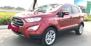 Cần bán lại xe Ford EcoSport 2019, màu đỏ giá 595 triệu tại Tp.HCM