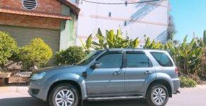 Bán xe Ford Escape năm 2010, màu xám giá 375 triệu tại Tp.HCM
