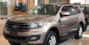 Bán xe Ford Everest MT năm 2019, xe nhập giá 999 triệu tại Kiên Giang