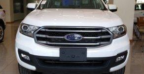 Giảm giá sâu - Tặng phụ kiện chính hãng khi mua chiếc xe Ford Everest Ambiente 2.0L MT, sản xuất 2020 giá 959 triệu tại An Giang