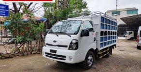 Giá bán xe tải KIA chở heo, lợn tại Bà Rịa Vũng Tàu giá 382 triệu tại BR-Vũng Tàu